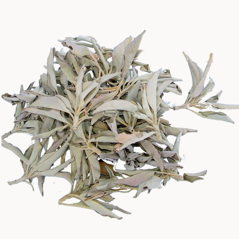 Weißer Salbei lose 100 g Cluster Premium Qualität (White Sage) getrocknet, aus Kalifornien, naturbel