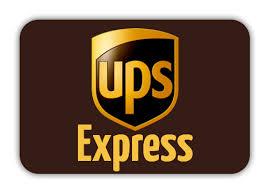 UPS Express Next Day (Sendungsverfolgung, versichert, sehr schnell)